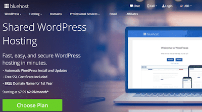 bluehost wp hosting review